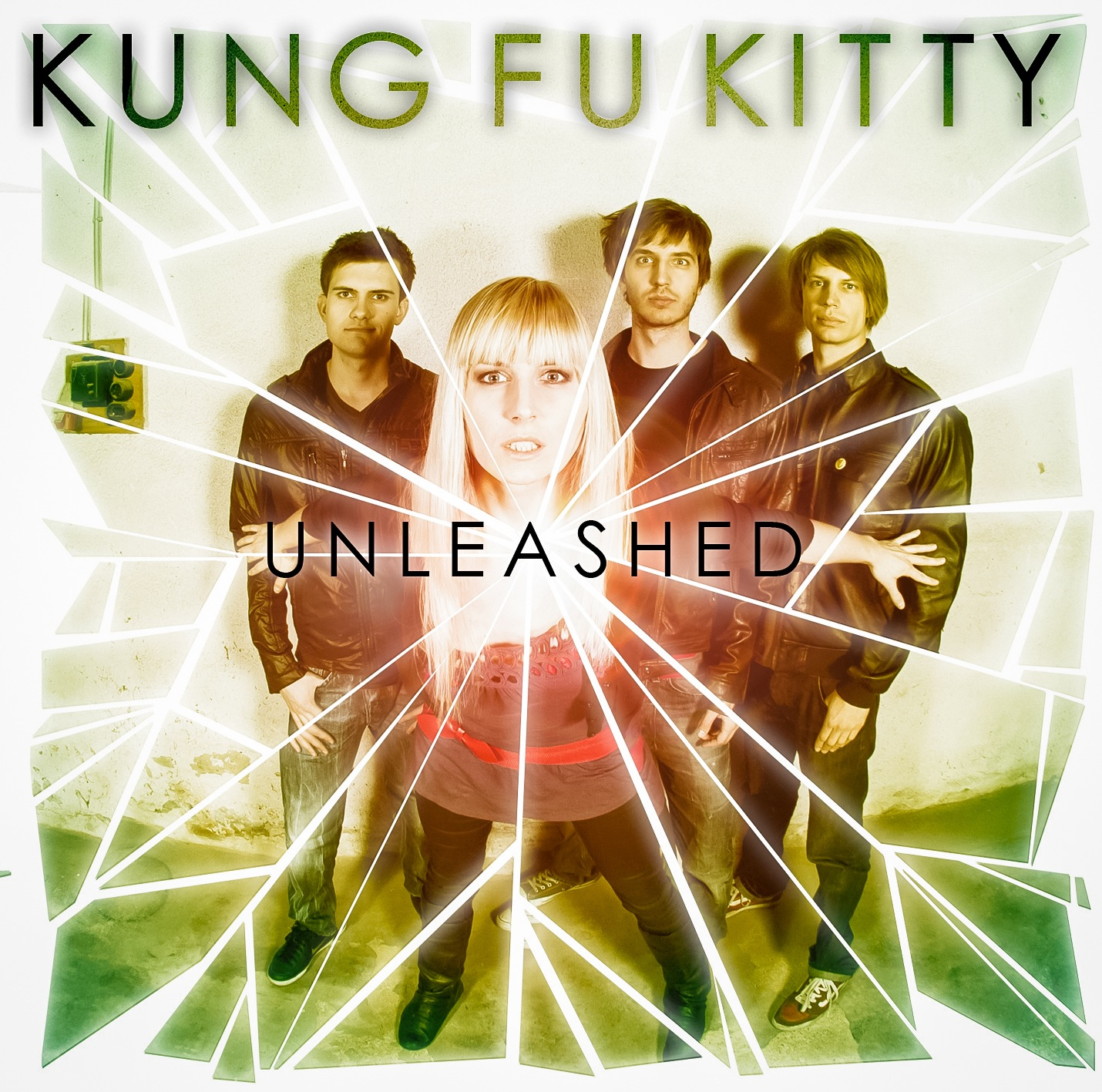 Kung Fu Kitty - Unleashed